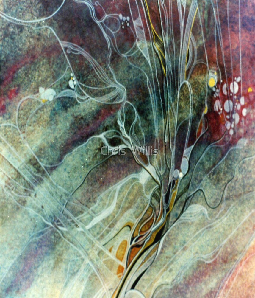 Underwater Mystery by Chris  Willis