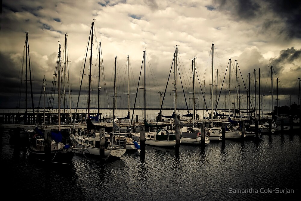 Sleeping Harbour by Samantha Cole-Surjan