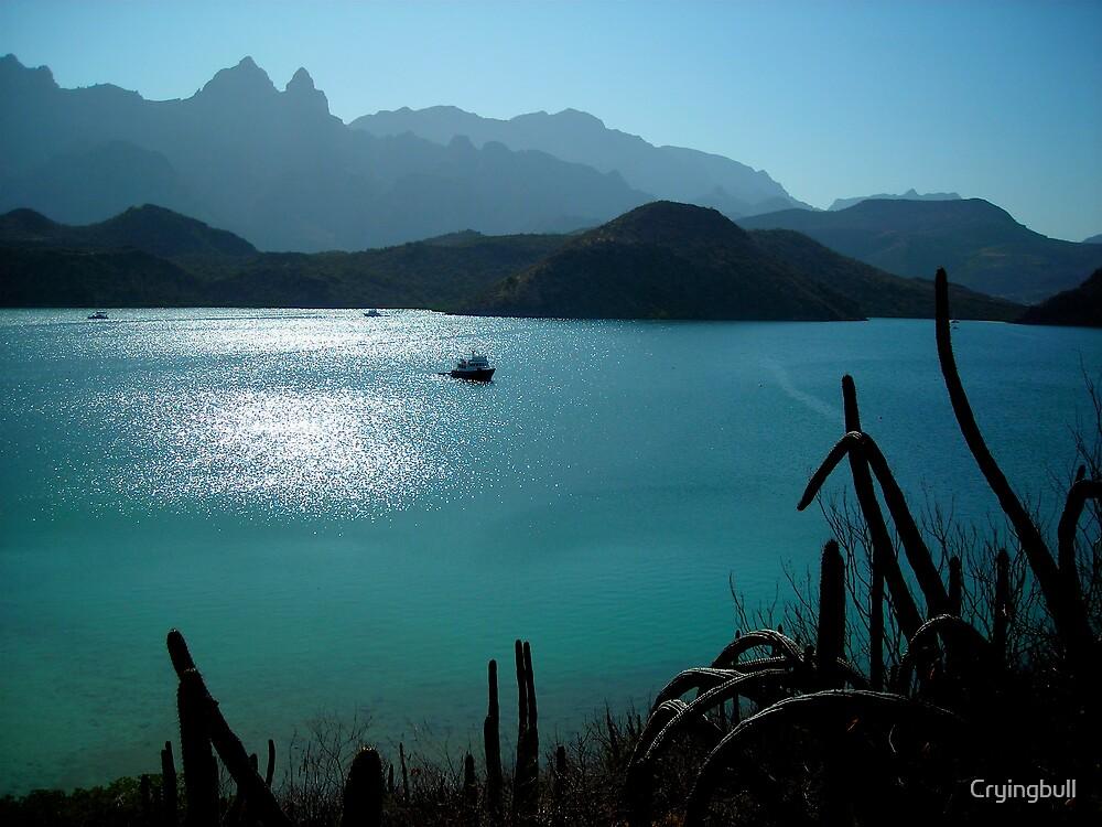 Lucky Day II, Puerto Escondido, Baja California, Mexico by Cryingbull