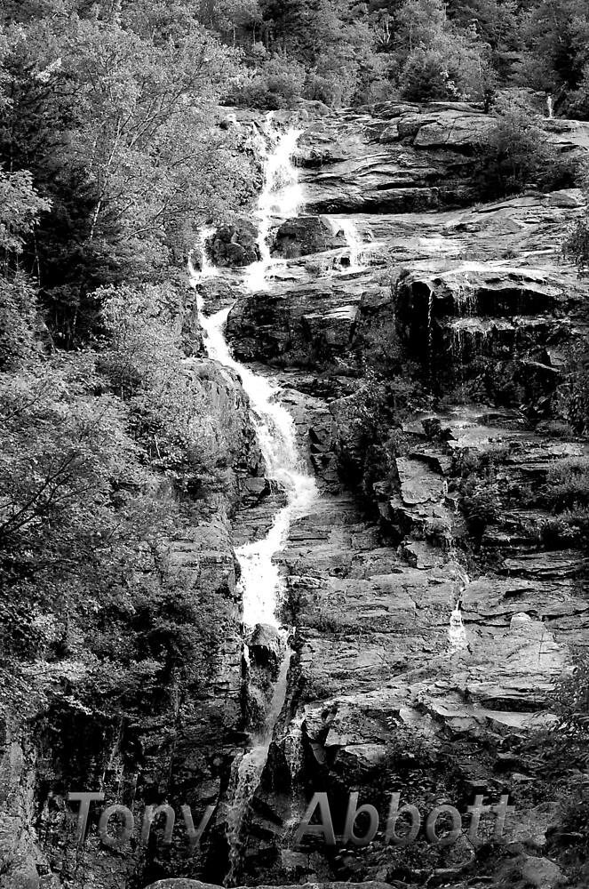 Falling Water by TonyAbbott