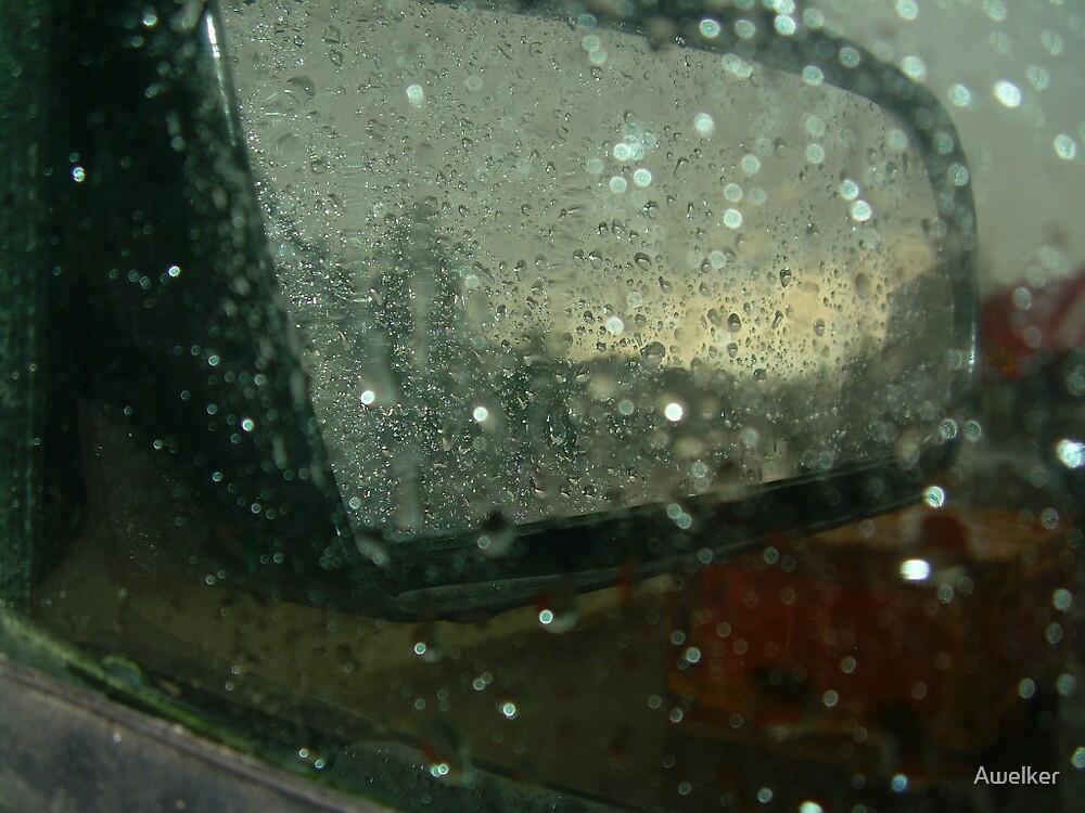 Rain  by Awelker
