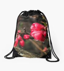 Japanese Quince Drawstring Bag