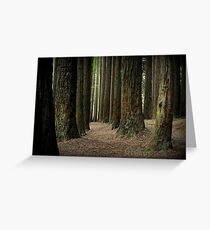 Californian Redwoods -The Otways Victoria Greeting Card