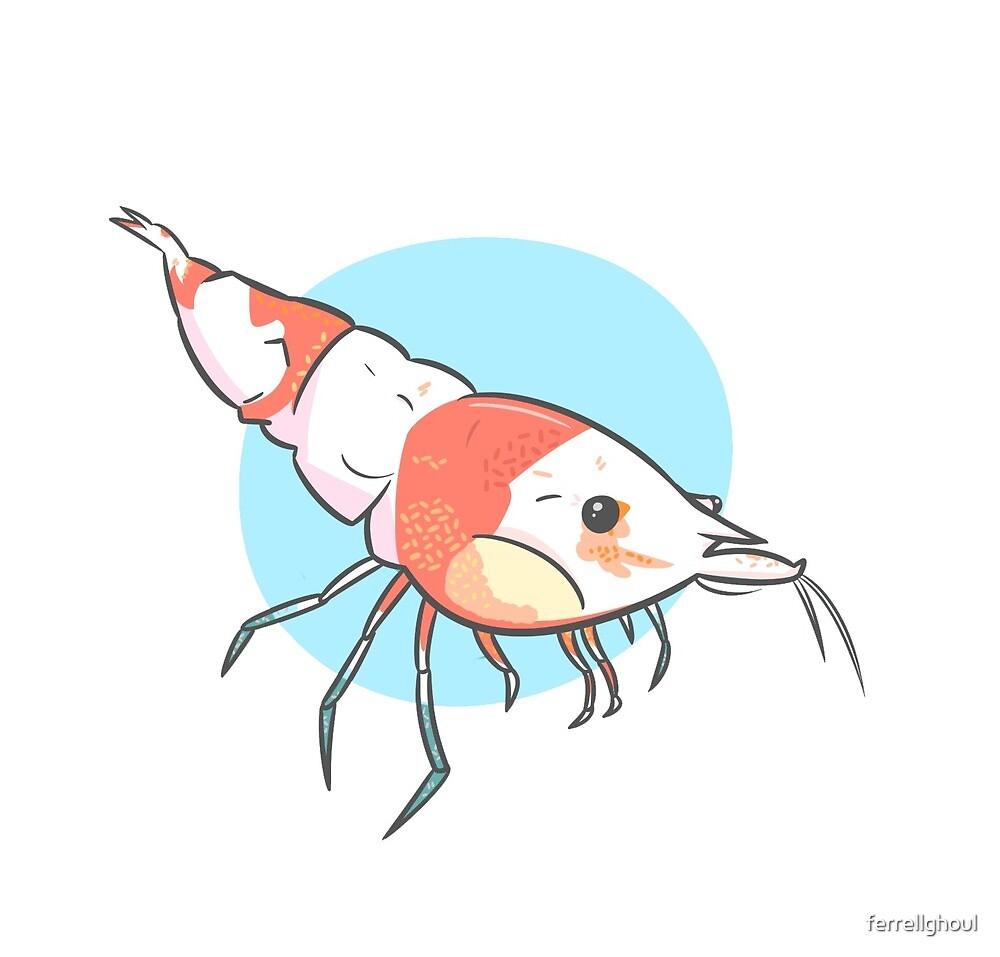 We're Shrimp People Now
