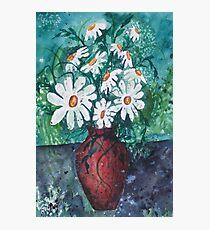 Daisy Vase Photographic Print