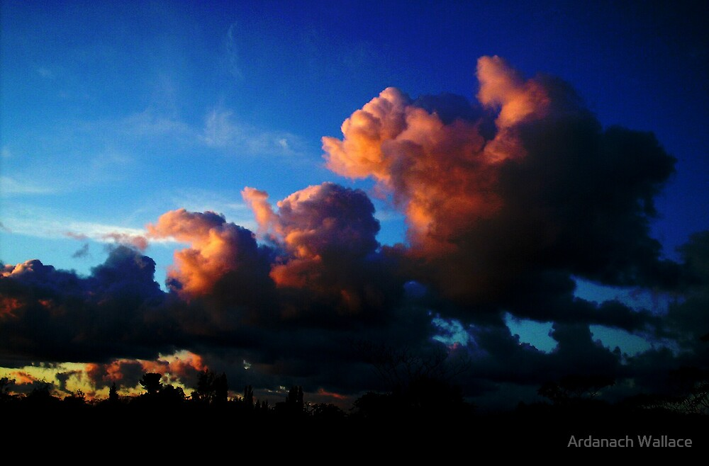 Kerikeri Sky by Ardanach Wallace