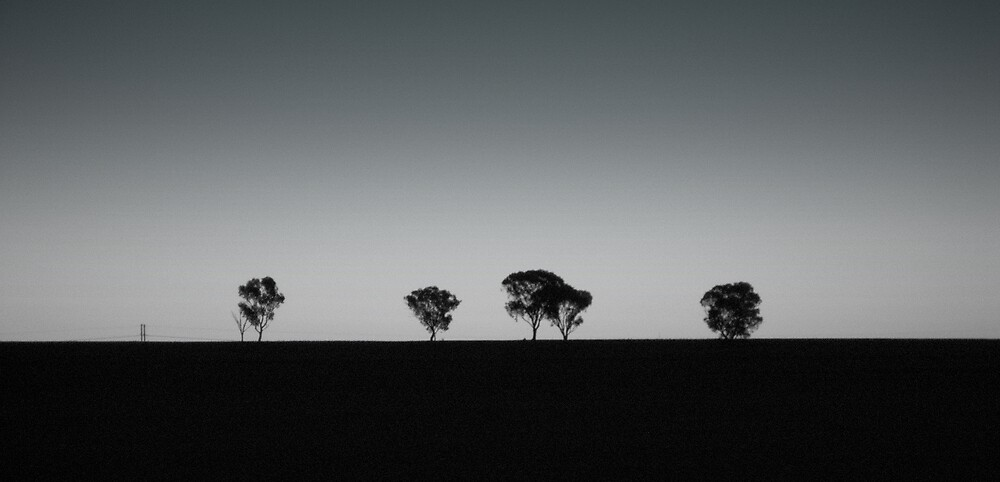 Hilltop tree line by K.D. Hemi