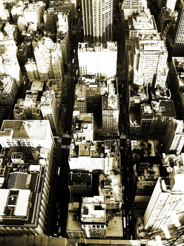 Above New York City by pixelvision
