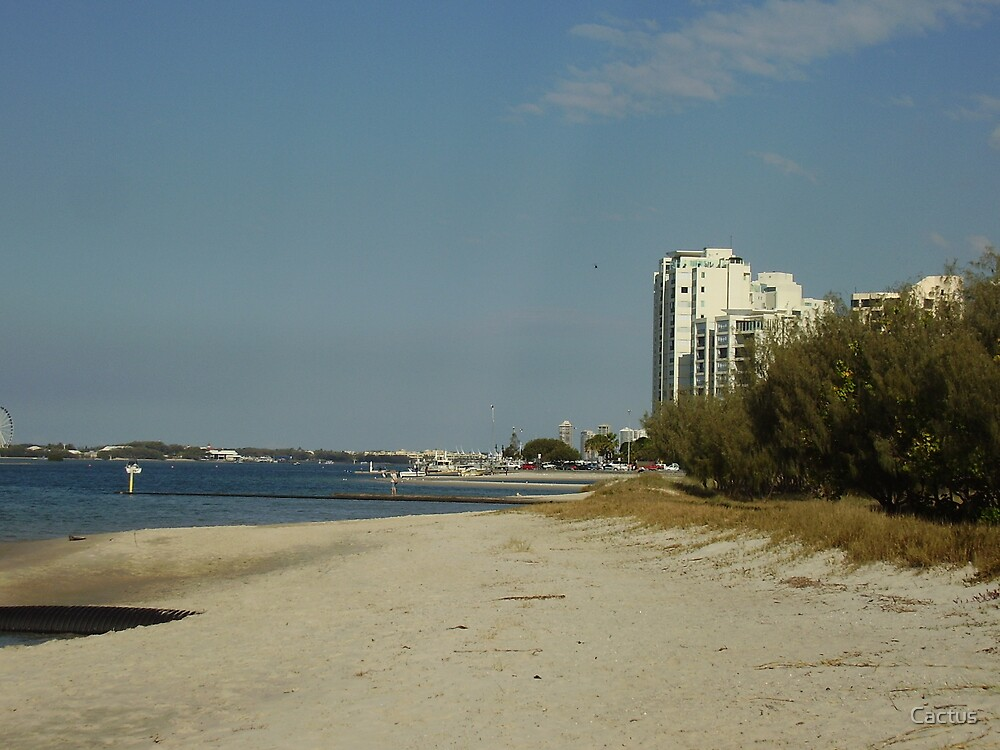 Gold Coast Broad Water, Queensland, AU by Cactus