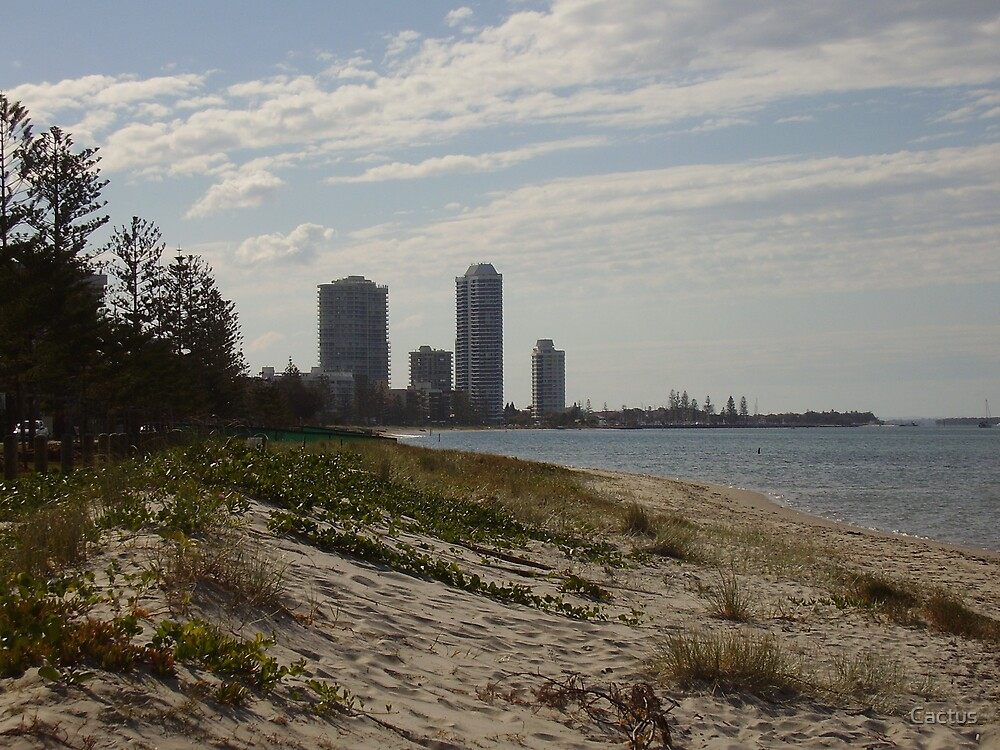 Gold Coast Broad Water, Queensland, AU (2007) by Cactus