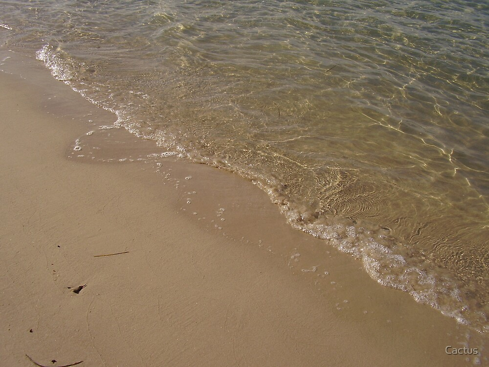 Clear Gold Coast Waters, Queensland, Australia (August, 2007) by Cactus