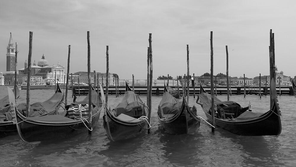 Venice Style by Chris Putnam