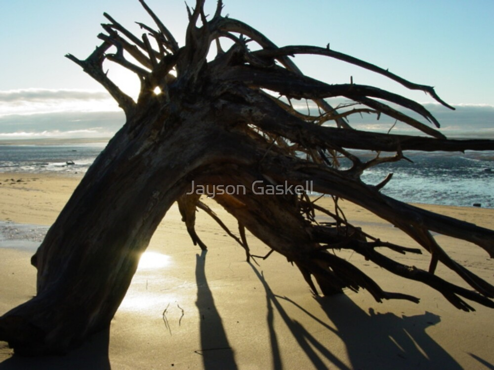McEwens Beach sunrise by Jayson Gaskell