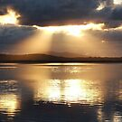 Sunrays l by BevB