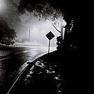 The Last Bend by Bruce  Watson
