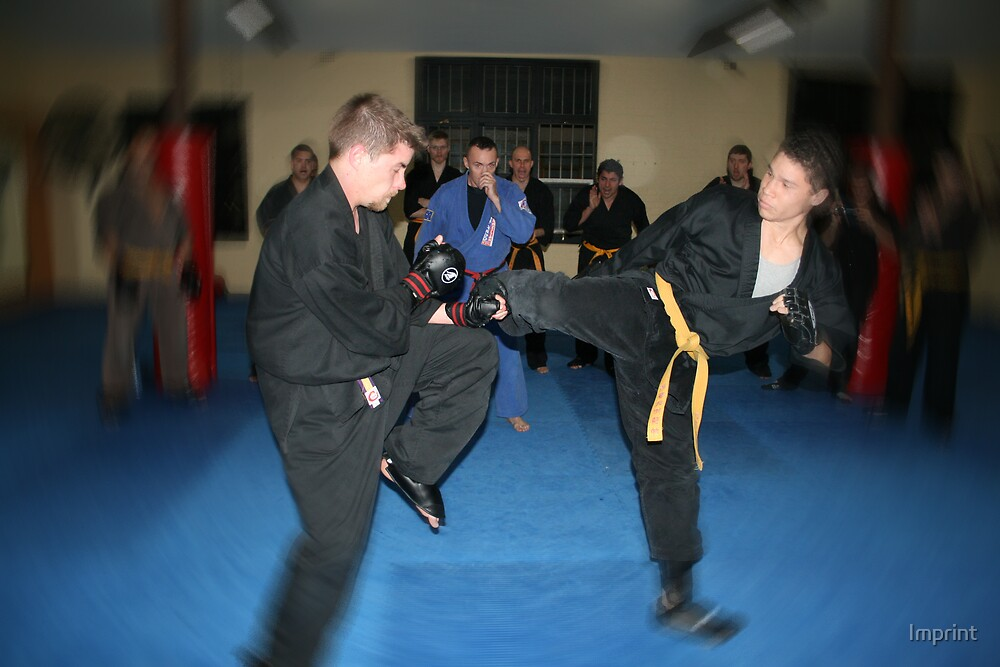Gold Belt Grading Wing Chun Kung Fu by Imprint