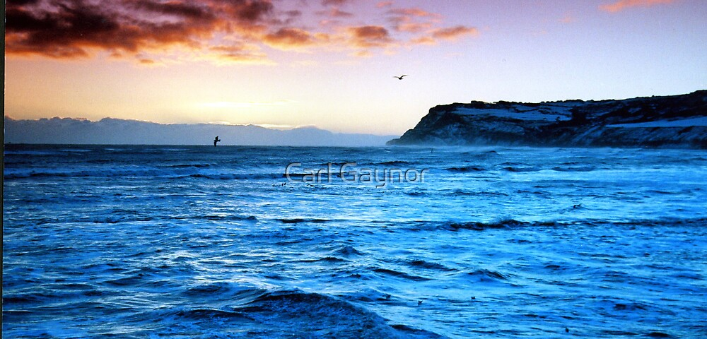 The Bay One  by Carl Gaynor