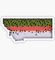 Montana Rainbow Trout Sticker