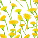 Fresh Spring Dandelions by TinaGraphics
