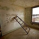 Abandoned Pines Hotel - 9 (The Ladder) by mal-photography