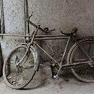 Re-cycle by John Callaway