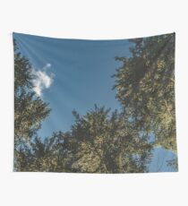 Trees in the Hoh Rainforest - Travel Sun Forest Nature Tree sun green hiking adventure sky Wall Tapestry