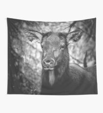 ADORABELK - portrait of a highland elk nature wild black and white funny animals wall tapestry love Wall Tapestry