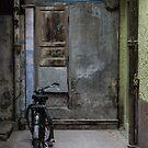 Re-cycle (II) by John Callaway