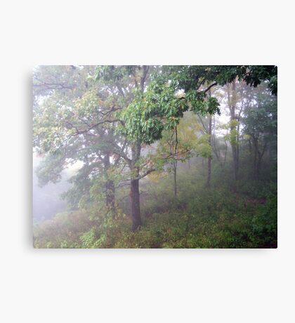 Foggy Shenandoah Mountain Top Canvas Print