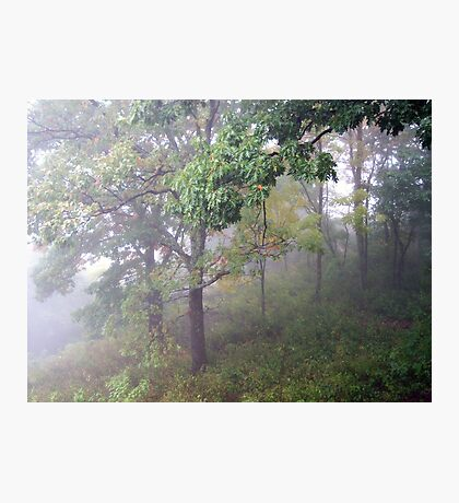 Foggy Shenandoah Mountain Top Photographic Print