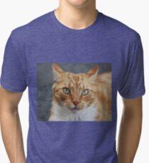 The Cat stare Tri-blend T-Shirt