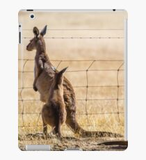 At the fence iPad Case/Skin