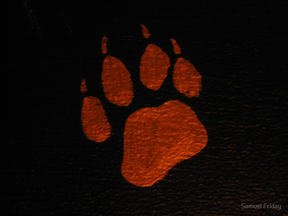 cheetah paw by Samuel Friday