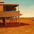 Bauple Farmhouse by Cary McAulay