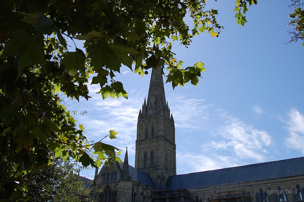 Salisbury Cathedral by gingerbird