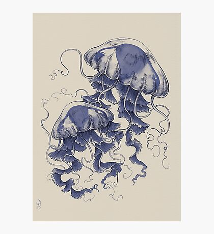 Jellyfish: In Bloom (Blue) Photographic Print