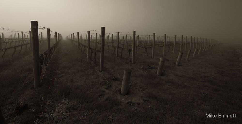 Misty Wine by Mike Emmett