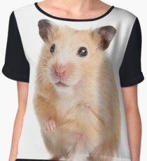Cute Hamster Rodent  Chiffon Top