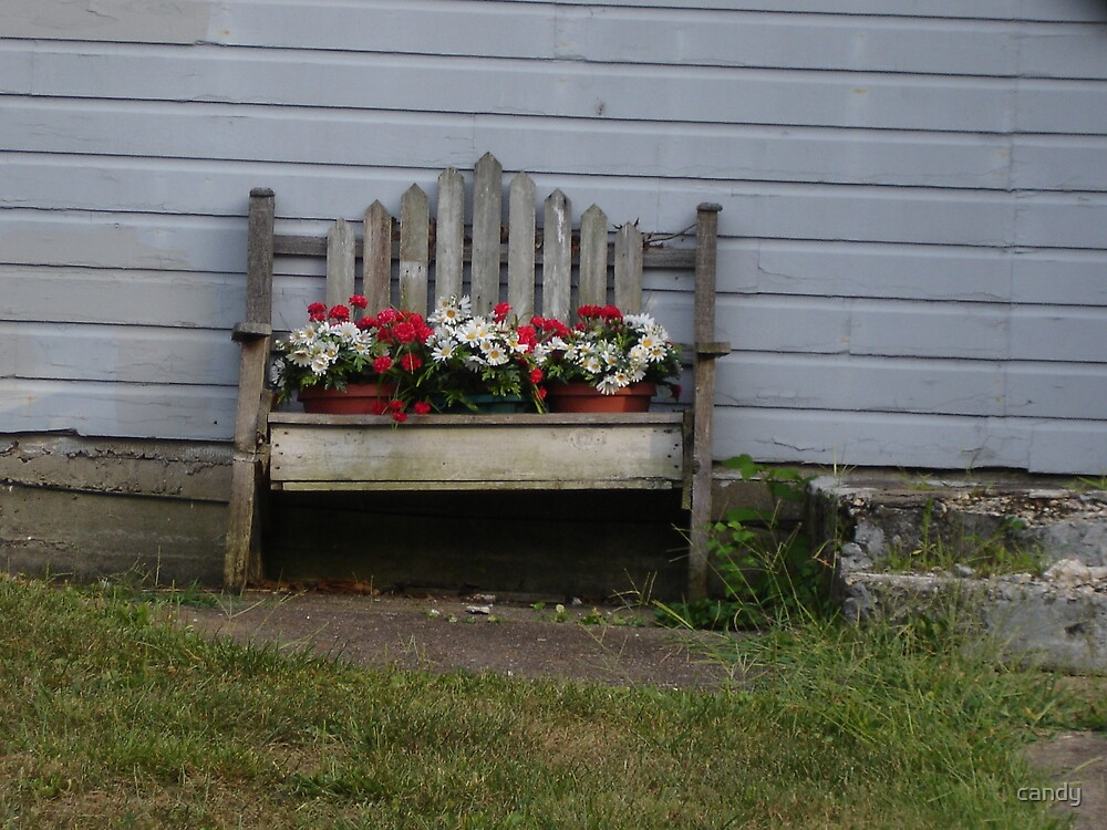 Bench of flowers  by candy