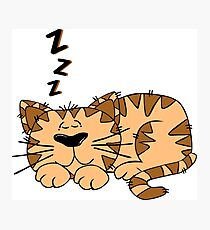Cute Funny Cartoon Silly Sleeping Cat Character Doodle Animal Drawing Photographic Print