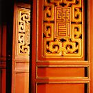 Cinnabar Gates by Joumana Medlej