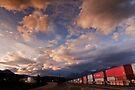 Rail Yard  by Alex Preiss