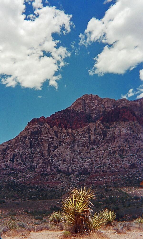 Red Rock Canyon II by Erika Benoit