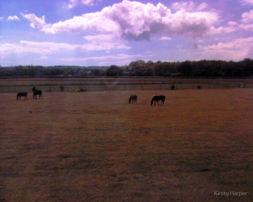 Horses  by Kirsty Harper