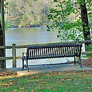 Sitting By The River by RickDavis