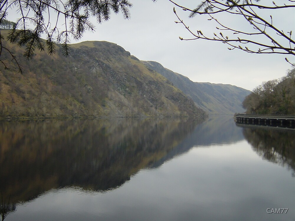 Loch Awe and Pass of Brander by CAM77