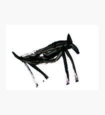 Horsey 3 Photographic Print