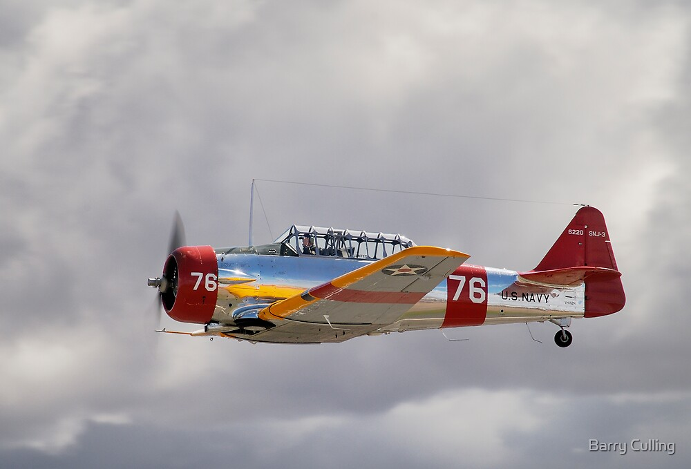 Harvard Flypast by Barry Culling