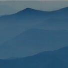 Blue Ridge Mountains II  by Gary L   Suddath