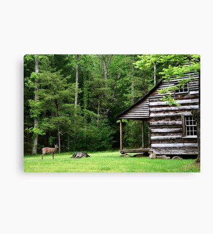 A Visitor  Canvas Print